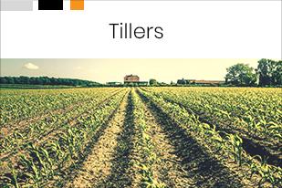 Tillers12