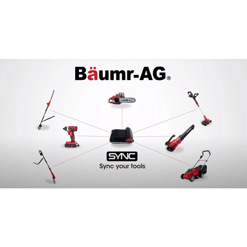 BAUMR-AG 20V SYNC Cordless Lithium Impact Driver Kit, with Battery, Charger, Carry Bag by Baumr-AG